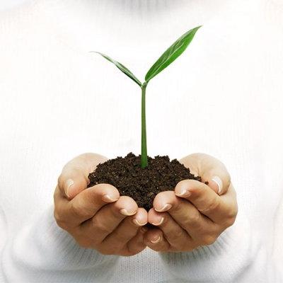 ❶ Как украсить свой огород